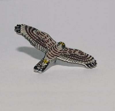 blotniak-zbozowy-spiewak-przypinka-ptaki-otop